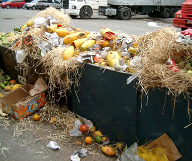 What are the characteristics of food waste?